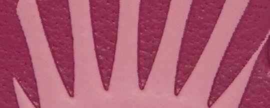 B4/True Pink