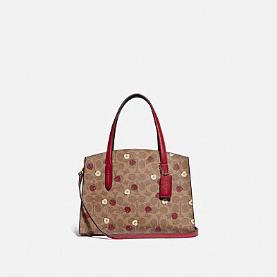 CHARLIE CARRYALL 28 IN SIGNATURE CANVAS WITH SCATTERED APPLE PRINT