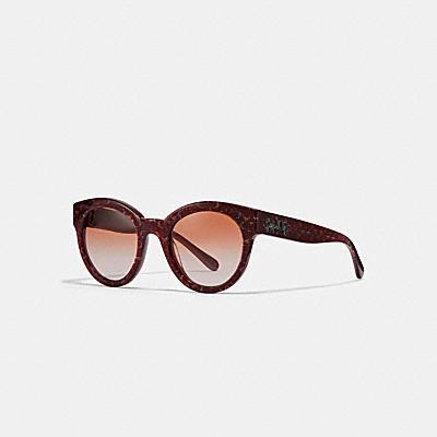 SIGNATURE C 太陽眼鏡