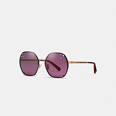 PRAIRIE RIVETS HEXAGON SUNGLASSES
