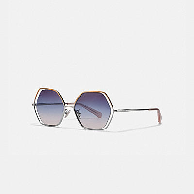 WIRE FRAME HEXAGON SUNGLASSES