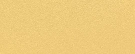 BP/向日葵黃
