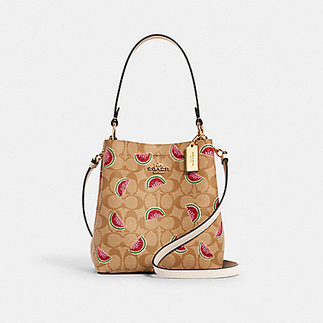 COACH 1619 SMALL TOWN BUCKET BAG IN SIGNATURE CANVAS WITH WATERMELON PRINT IM/LT KHAKI/RED MULTI