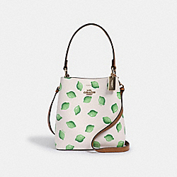 COACH 1625 Small Town Bucket Bag With Lime Print IM/CHALK GREEN MULTI