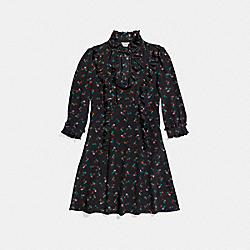 COACH 23122 Western Shirt Dress BLACK MULTI