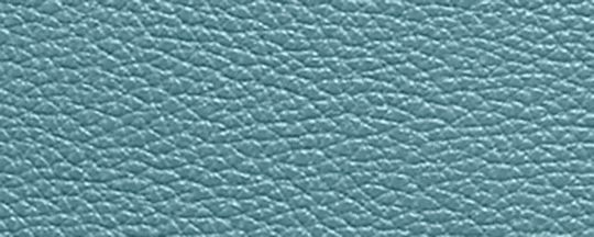 GM/海洋藍色