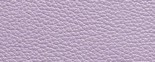 GM/紫丁香色