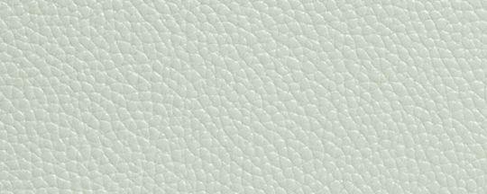 銀色金屬配件/淡 綠色