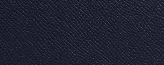 LI/海軍藍色