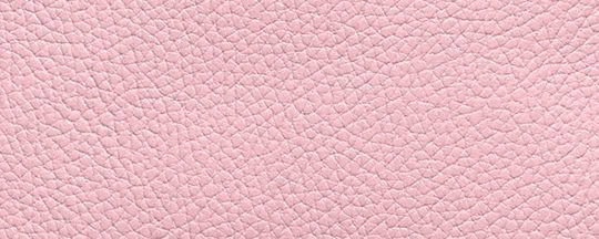 V5/極光粉色