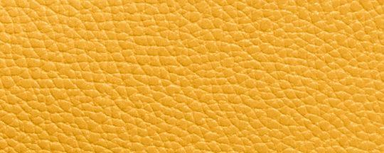 SV/Yellow Stone
