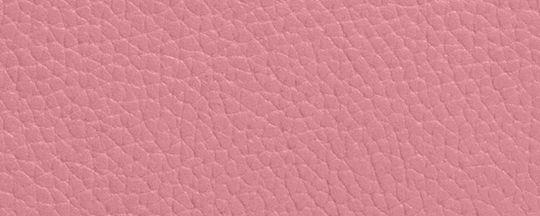 GM/True Pink