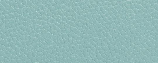 SV/Light Turquoise