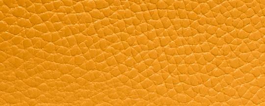 V5/花粉黃色