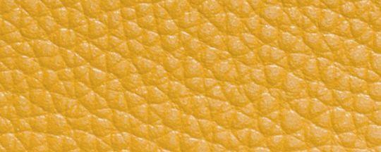 DK/金黃色