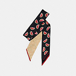 COACH 671 - SIGNATURE WATERMELON PRINT SILK SKINNY SCARF NAVY/RED