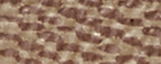 B4/淡褐色