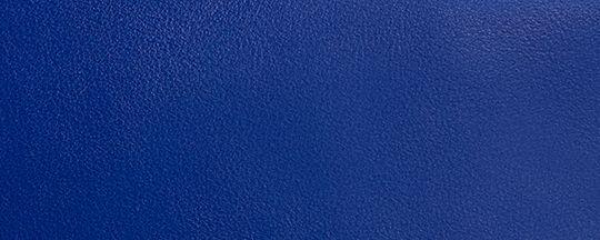 スポーツ ブルー