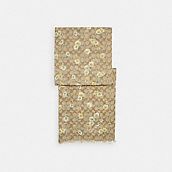 SIGNATURE DAISY PRINT OBLONG SCARF - LIGHT KHAKI/YELLOW - COACH C2488