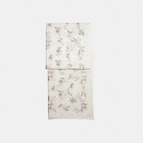 COACH C2488 SIGNATURE DAISY PRINT OBLONG SCARF CHALK/PINK