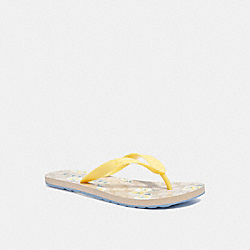 COACH C3038 Zak Flip Flop With Signature Daisy Print LIGHT KHAKI