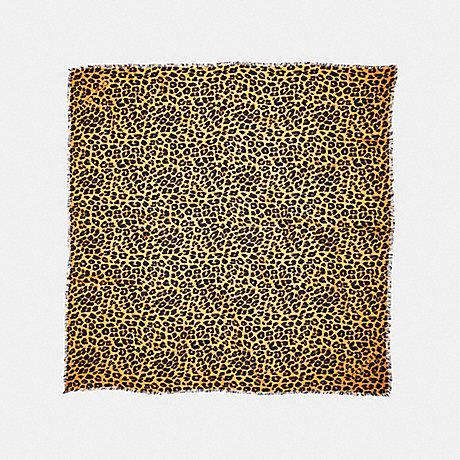 COACH LEOPARD PRINT OVERSIZED SQUARE - CARAMEL - f19750