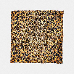 COACH F19750 Leopard Print Oversized Square CARAMEL