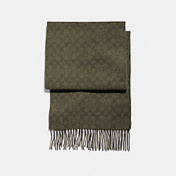 CASHMERE BLEND BI COLOR SIGNATURE C SCARF - f21056 - MILITARY GREEN