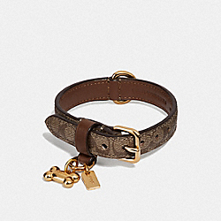 COACH F26175 Small Pet Collar In Signature Crossgrain Leather GOLD/KHAKI SADDLE