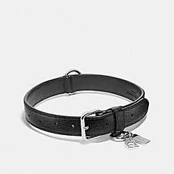 COACH F26904 Large Pet Collar SILVER/BLACK