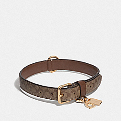 COACH F26907 Large Pet Collar In Signature Crossgrain Leather GOLD/KHAKI SADDLE