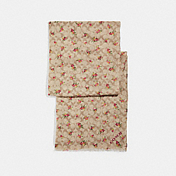 SIGNATURE DAISY BUNDLE PRINT OBLONG - f28815 - IVORY