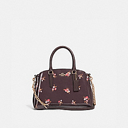 MINI SAGE CARRYALL WITH BABY BOUQUET PRINT - f31395 - OXBLOOD MULTI/light gold