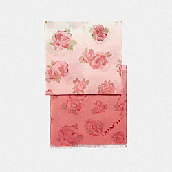 COACH F41413 Ombre Jumbo Floral Print Silk Oblong Scarf CHALK