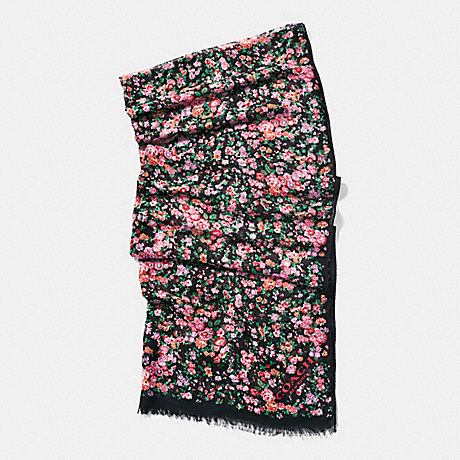 COACH f58010 POSEY CLUSTER OBLONG SCARF BLACK MULTICOLOR