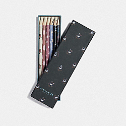 COACH F67145 Pencil Set With Ditsy Floral Print MULTICOLOR