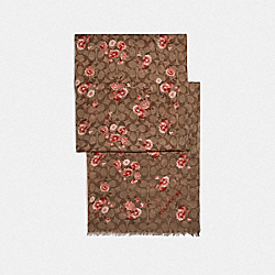 SIGNATURE PRAIRIE DAISY CLUSTER PRINT OBLONG SCARF - F76447 - KHAKI/CORAL