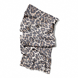 COACH F83978 Signature Stripe Ocelot Wrap