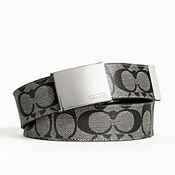 COACH F90229 Heritage Stripe Belt