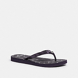 COACH G3775 - FLIP FLOP PURPLE