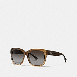 COACH L074 Sienna Sunglasses BROWN HORN