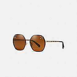 PRAIRIE RIVETS HEXAGON SUNGLASSES - BROWN - COACH L1090