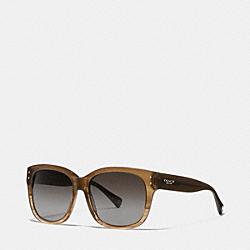 COACH LP074 Sienna Polarized Sunglasses BROWN HORN