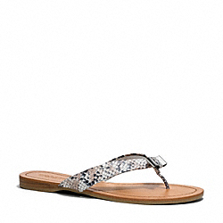 COACH Q3259 Sable Sandal SHADOW