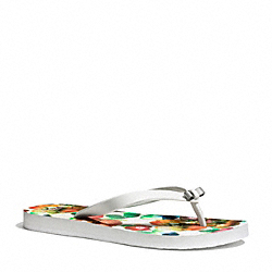 COACH Q4113 Amel Sandal PARCHMENT/WATERCOLOR