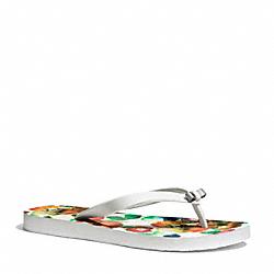 COACH Q4113 Amel Sandal PARCHMENT/WATERCOLOR
