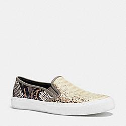 COACH Q8093 Chrissy Sneaker BEECHWOOD FOG/FOG IVORY