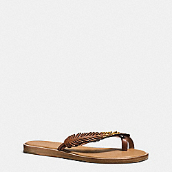COACH Q8301 Bali Sandal SADDLE/GOLD