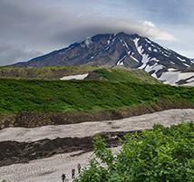 View of the green wilderness leading up to the Avachinsky volcano.
