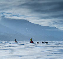 Mark, Faith, and their sled dog teams travel across a flat snowy expanse.